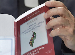 Amazonia. Otros tres cardenales rechazan el documento base del Sínodo